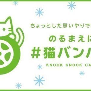 【署名のお願い】「猫バンバン」のテレビCMを流してください
