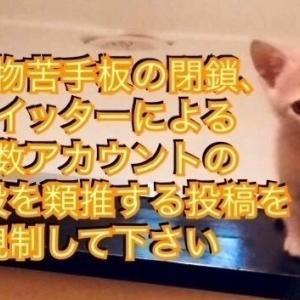 【署名のお願い】猫虐待動画・5ちゃんねる生き物苦手板の閉鎖を求めます