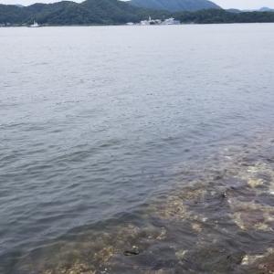 1人で日本海を堪能