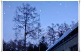 雪の降る日に