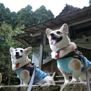 3連休2日目♪鳥取県で遊んでますU^ェ^U