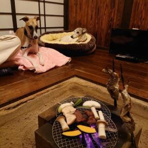 鹿児島・湯之尾温泉・早水荘の離れに泊まる。2019秋九州旅行備忘録7。