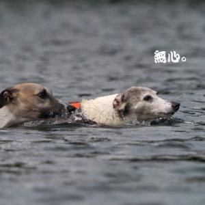 レイチェル、齢十三にして游泳術をここに極めり。