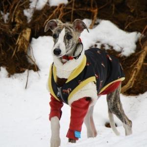 ハリエット、初めての雪。