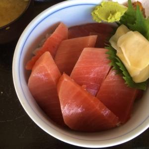 焼津で新鮮南マグロ丼食べてきました