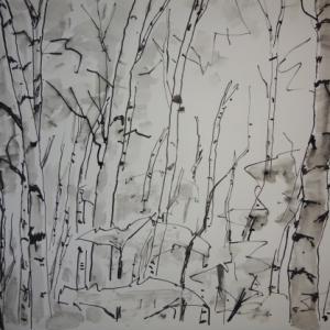 白樺を描く 1