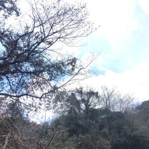 2019年3月登山部報告!打越山 登山部2周年