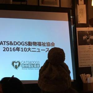 CATS&DOGS動物福祉協会・新年親睦会