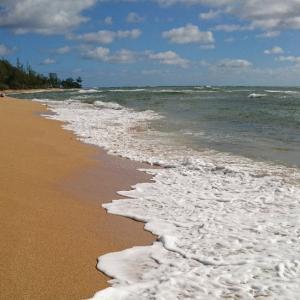 家もいいけどやっぱり海に行きたいの(笑)