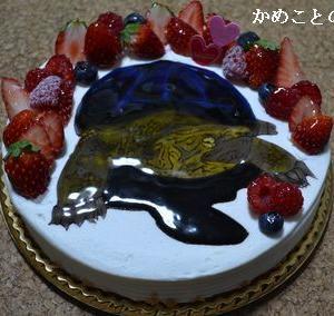 亀助、お誕生日おめでとう!!
