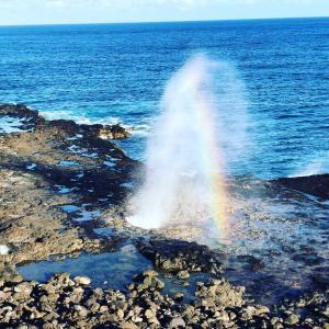 Instagram始めました。カウアイ島から癒しの風を届けたくて。