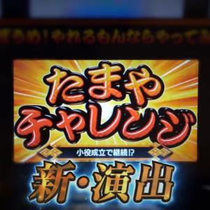 【限定情報あり!】新ハナビ/PV&解説動画公開!