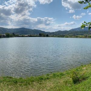 キャ二さんぽ35~広沢の池