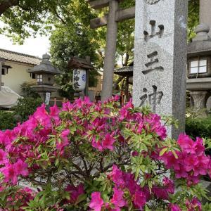 キャ二さんぽ39~山王神社