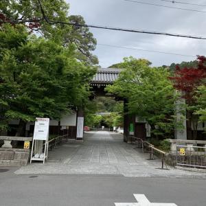 キャ二さんぽ48~東山エリア