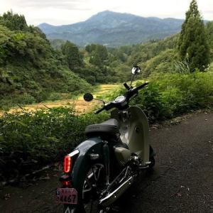 刈羽黒姫山に登ってきました。