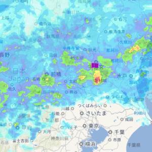 朝から雨です・・・一日雨の模様