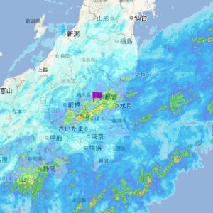 朝から雨です・・・今日は午前中は雨の模様
