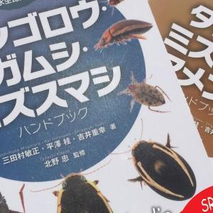 水生昆虫の本紹介
