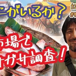 YouTube #3【ガサガサ日常編 #2】市場の魚