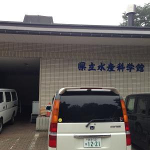 今日は岩手県宮古市の浄土ヶ浜に行ってきました!!
