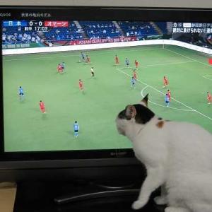 サッカーアジア予選