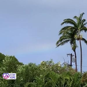ハワイ州観光局からのお知らせ