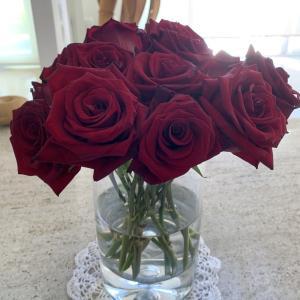 真紅の薔薇、まだ生きています
