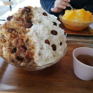 あざみ野「カフェ クノップゥ」濃厚かき氷に満足!!