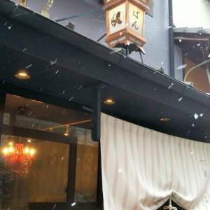 久しぶりに寒い京都です。