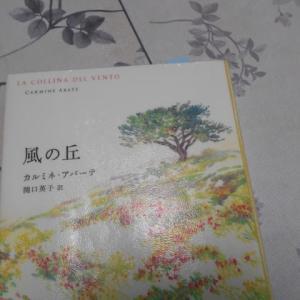 「風の丘」(カルミネ・アバーテ/Carmine Abate作 関口英子 訳)を読みました