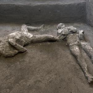 ポンペイで完璧な2体の遺跡を発見/Scoperta a Pompei, ritrovati due corpi intatti(2020.11.21)