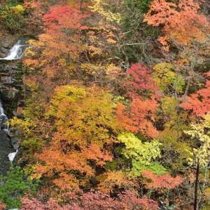 秋彩の湯川渓谷 ~安達太良山~