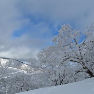 箕輪山の霧氷