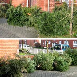 ドイツ人がツリーをすぐに片付けたくない訳。スペインでは明日クリスマスプレゼントもらう