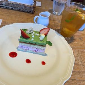 アフタヌーンティールーム&丸亀製麺&コメダ