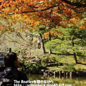 成田山公園の紅葉(最終回)