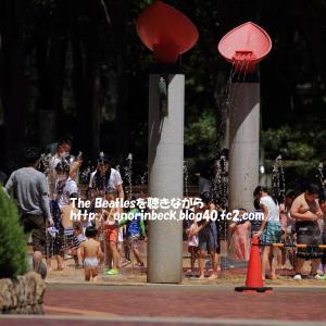 ふれあい広場@猛暑の千葉市動物公園