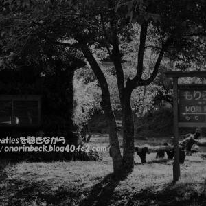 初秋の月崎(過去写真)@小湊鉄道2016
