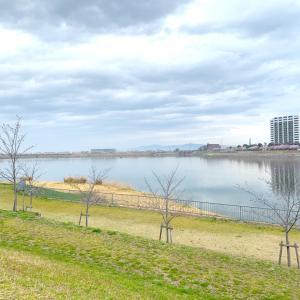 2020/03/27  手術見送り&狭山池の桜
