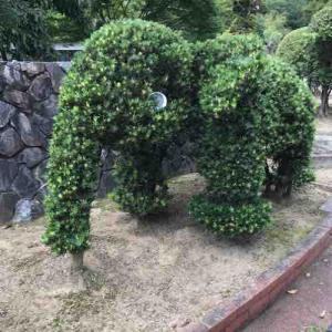 赤塚公園に