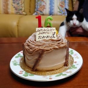 16歳おめでとう