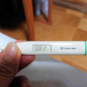 ワクチン接種2回目その後