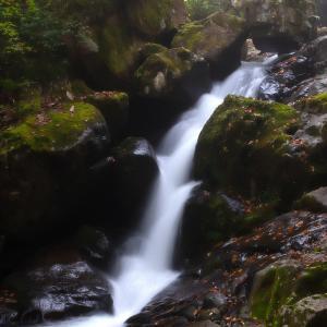 白い落水が綺麗 宇津江48滝