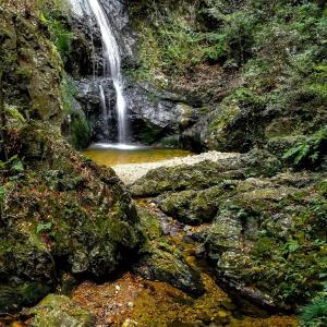 八曽滝とその上流 八曽