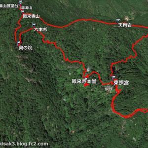 セッコク 鳳来寺山