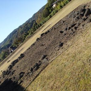 伊豆半島にも、環状列石