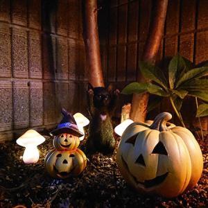 ハロウィンの花壇