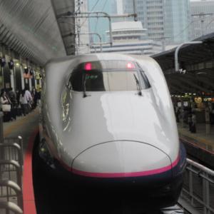 【まとめ記事】2020夏休み♪ (Go To 新潟編)