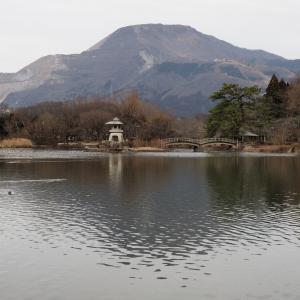 三島池(滋賀県米原市)2020年1月25日撮影